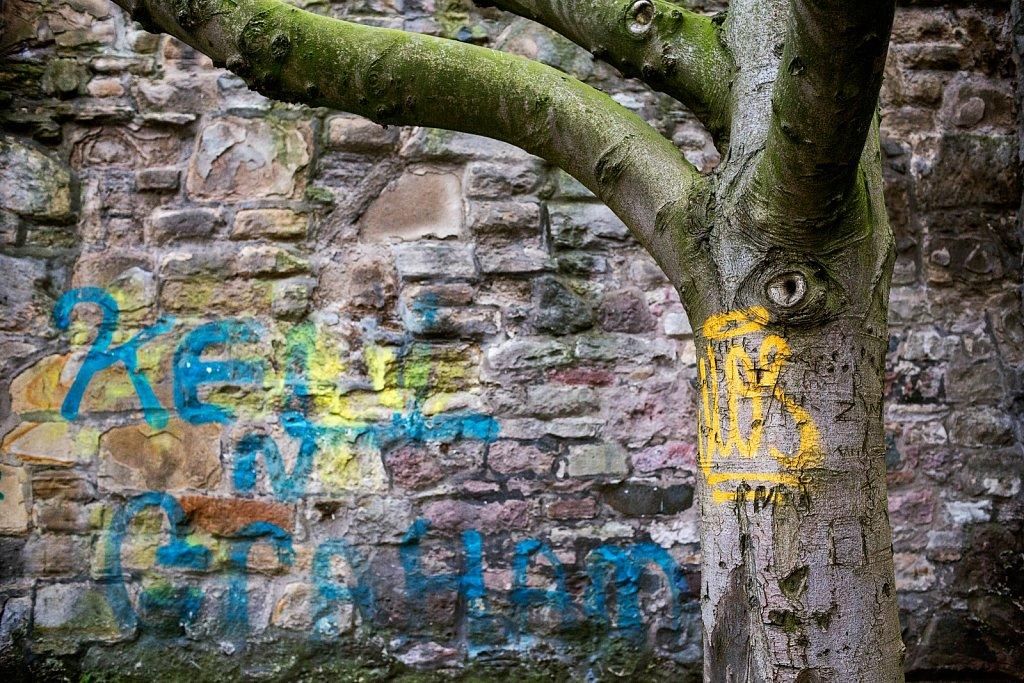 Graffitree